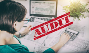 Guidelines for Surviving an IRS Audit