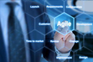 Characteristics of an Agile Organization